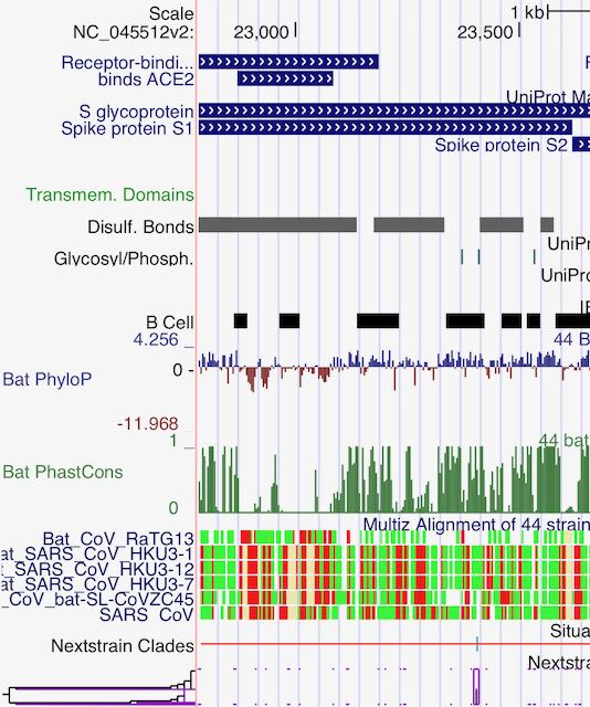 The UCSC Genome Browser for Covid-19