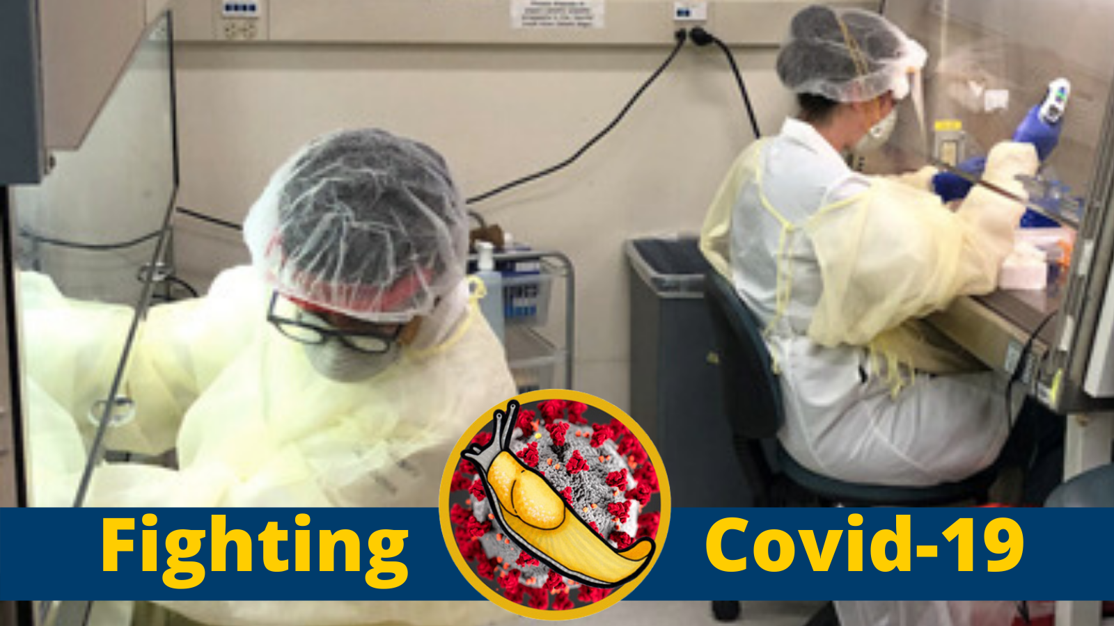 Two researchers in a lab at UCSC are working on developing testing for COVID-19