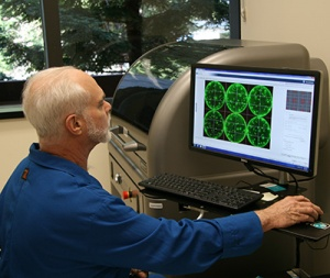 Using robotics, UCSC researchers automated the process of screening tens of thousands of cells to find cell lines that produce large amounts of the desired protein for an HIV vaccine. (Photo by T. Stephens)