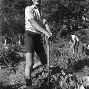 Master Gardener Alan Chadwick (photo courtesy UC Santa Cruz Farm & Garden)