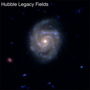 A Hubble Space Telescope image of a region in the Hubble Legacy Fields includes a large disk galaxy (above). The image below shows the Morpheus morphological classification results for the same region. (Image credits: NASA/STScI and Ryan Hausen)