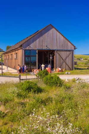 Beneath a clear blue sky, Banana Slugs gathered in the restored Cowell Ranch Hay Barn to enjoy the Alumni Vintner and Brewer Reception, featuring music, lively conversation, and plenty of appetizers.