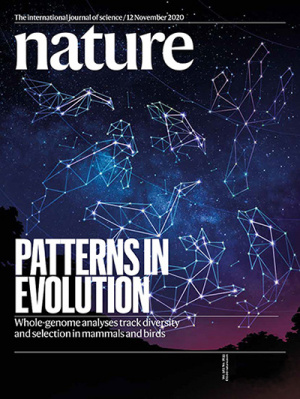 Three papers in this issue of Nature present major advances in understanding the evolution of birds and mammals, made possible by new methods for comparing the genomes of hundreds of species.