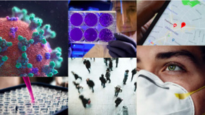 Interdisciplinary projects cover many aspects of the pandemic's impact, from testing, treatment, and transmission to genomics and virology, policy and privacy.